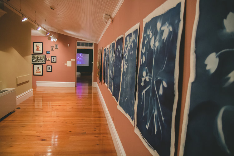 """Works from the """"Blue Carbon"""" series, (2018). Natascha Vasquez. Cyanotype on paper. 29 1/2"""" x 41 1/2"""". Work courtesy of the artist. Image courtesy of the National Art Gallery of The Bahamas."""