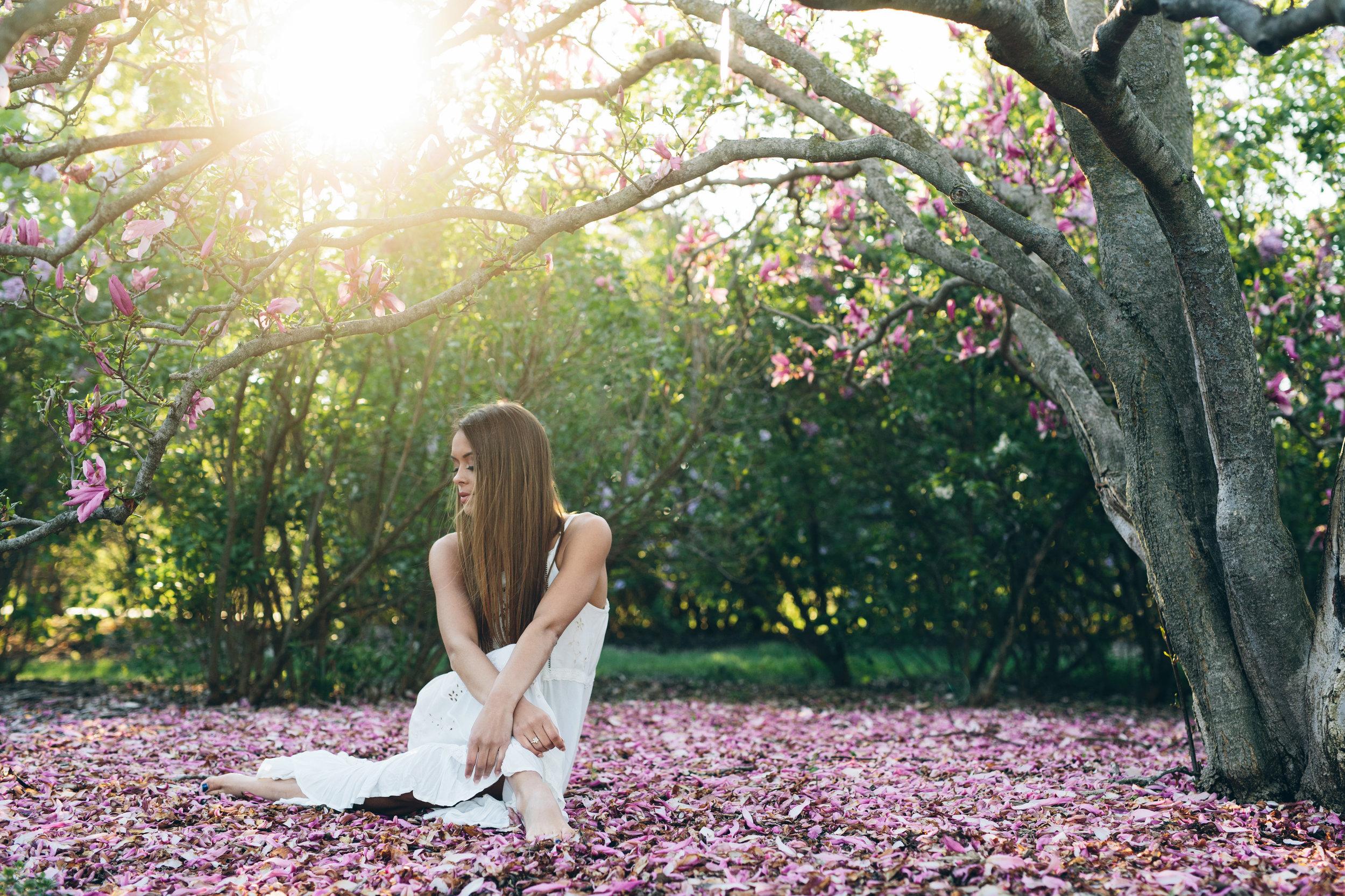 Spring magnolias senior picture photo shoot at the Arboretum in Madison, WI.