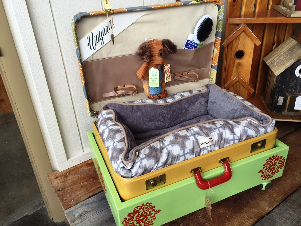 green dog bed.jpg