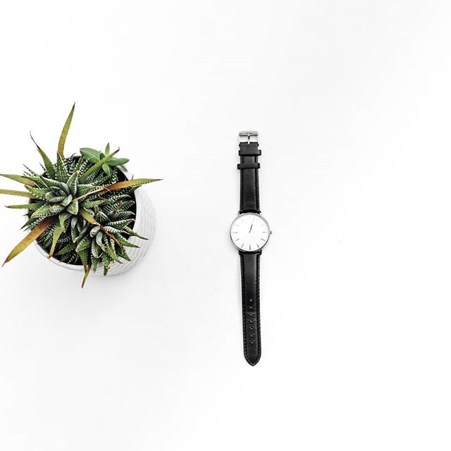 Simple splendour. . . . . . . . . #roysroad #designerwatches #nzfashion #wellington #newzealand #genuineleather #blackandwhite #minimal #simple #elegant #minimalism #aesthetic #stylelover #unisex #wristwatch #40collection #roysroadwatchco
