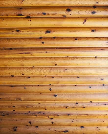 log cabin backdrop (1).jpg