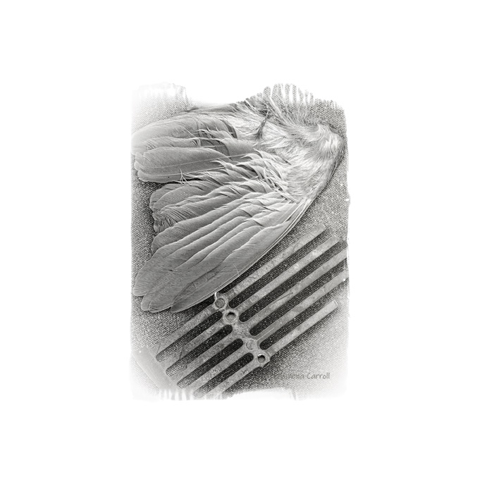 smallworks_surfacelight1_print-pcarroll_artist_2018.jpg