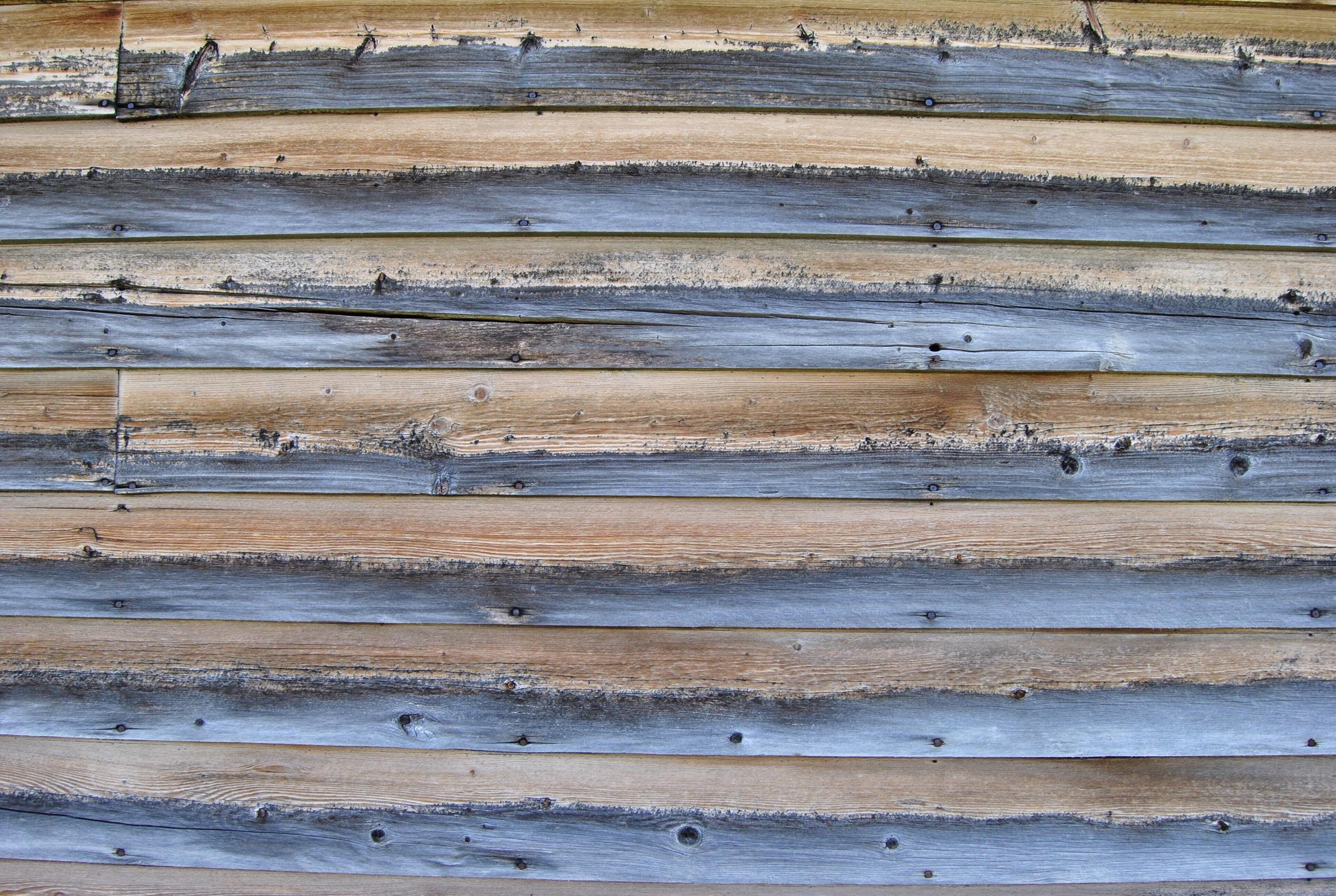 The gradient of the ageing wood was texturally beautiful.