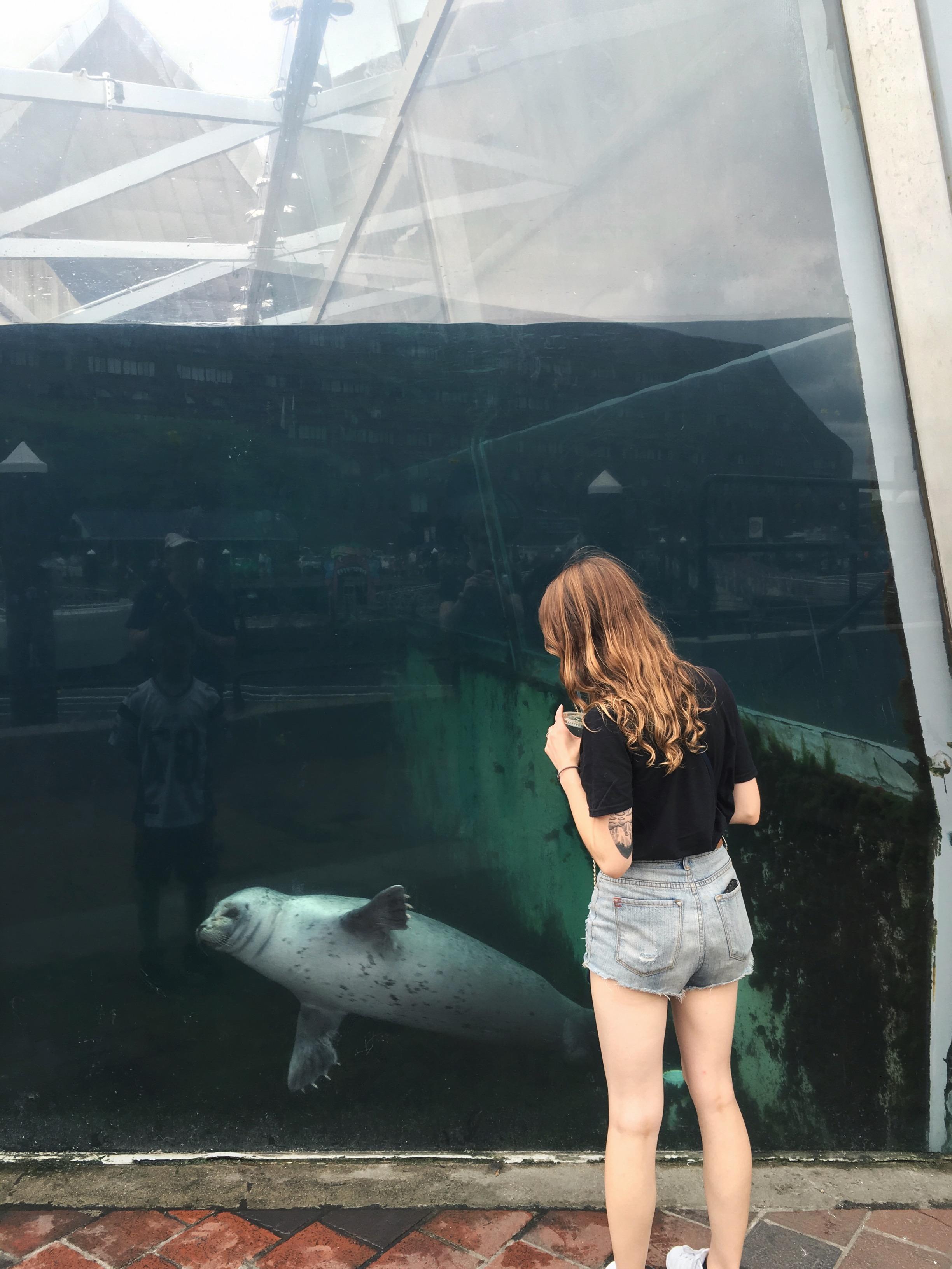 Why do seals have fingernails!?
