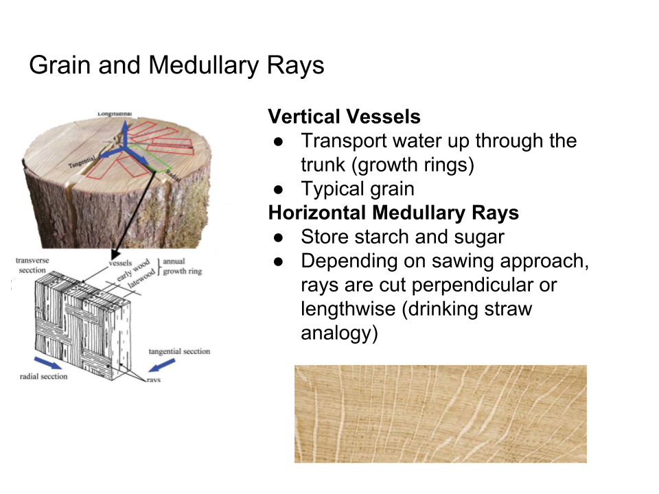 Log Sawing and Veneer Slicing Techniques - Grain and Medullary Rays.png