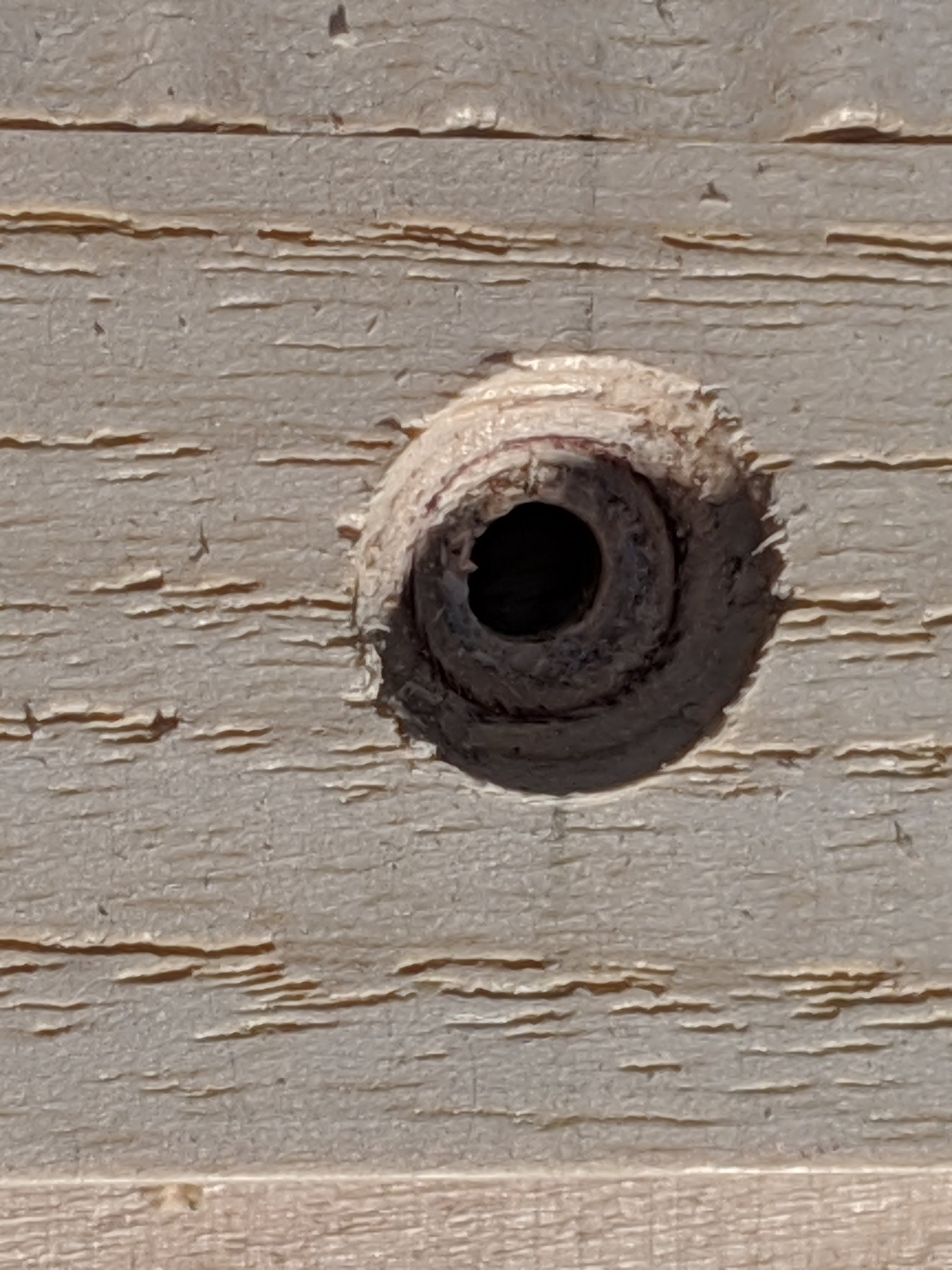 Resulting countersunk screw hole