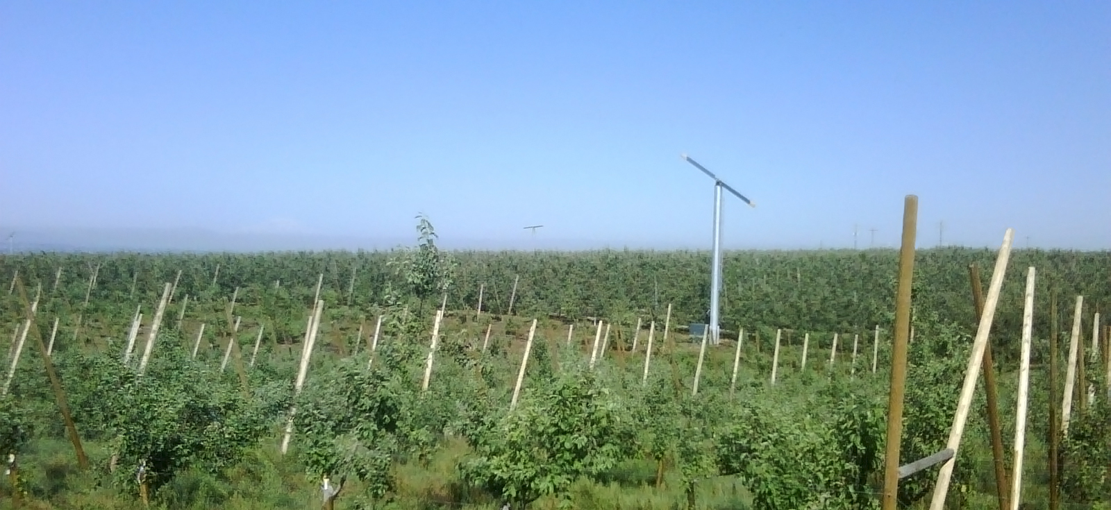Multiple Wind Machines over a Large Orchard