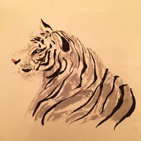 G Stewart tiger profile.jpeg