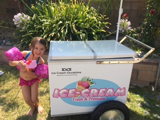 Kids always have a great time choosing one of their favorite ice cream novelties from our custom ice cream carts.