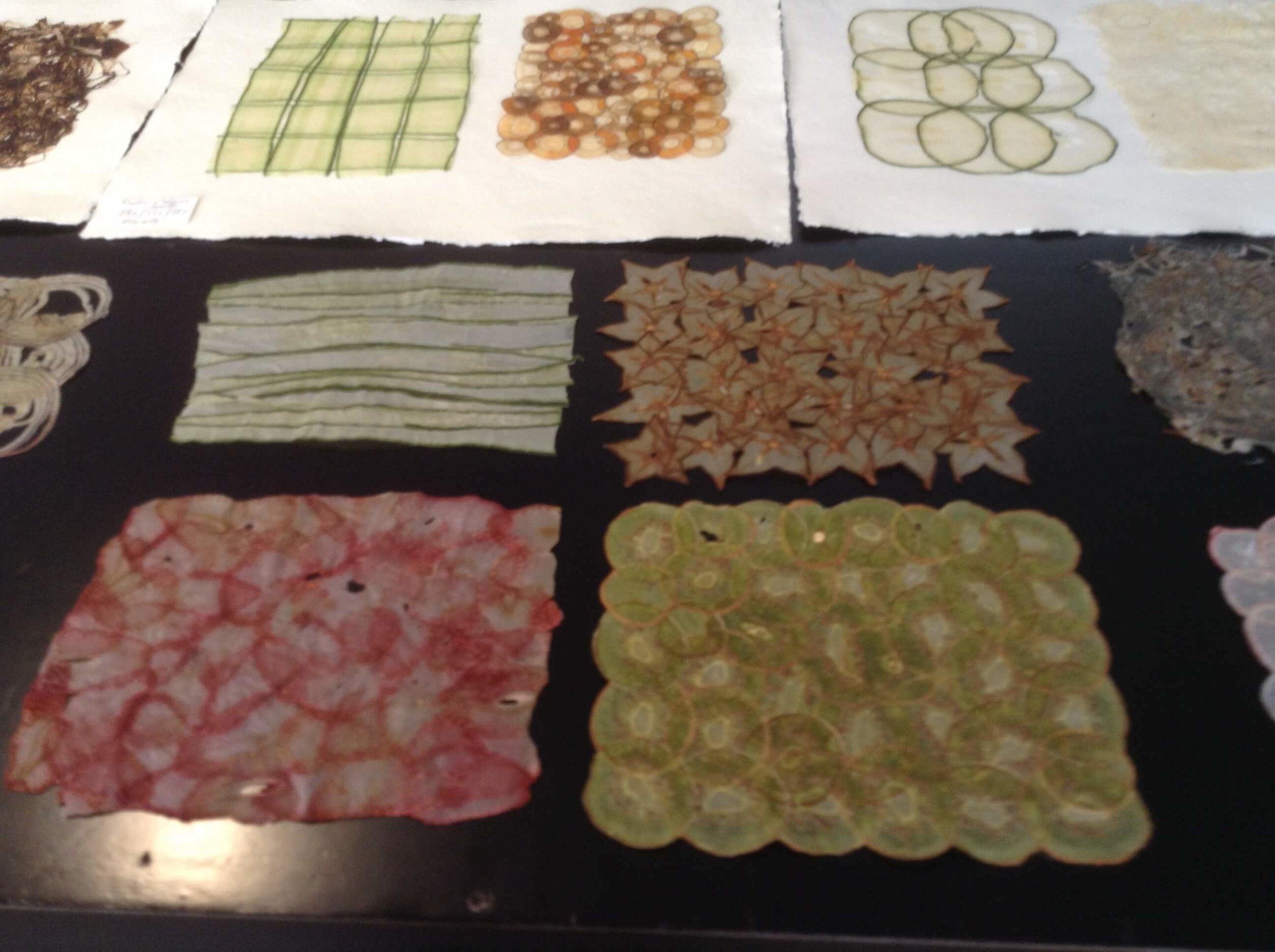 Jean-Michel Letellier's fine fruit & vegetable papers
