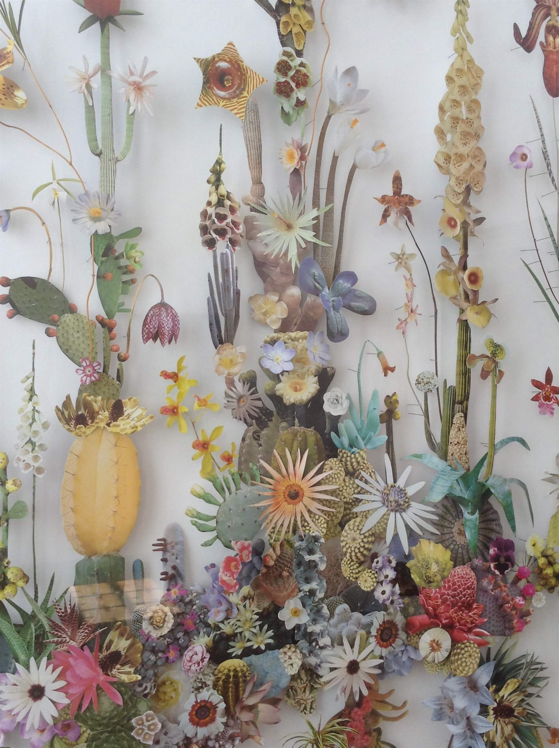 Anne ten Donkelaar's paper flowers