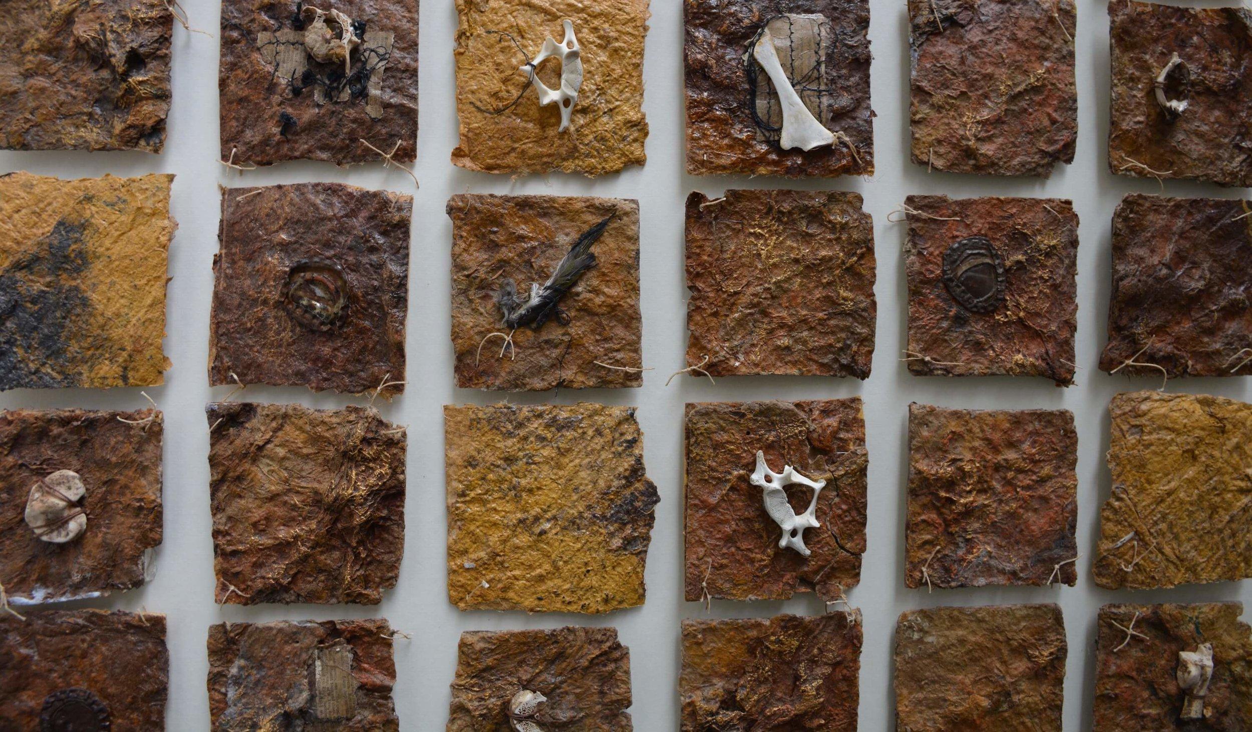 Landscape & bones