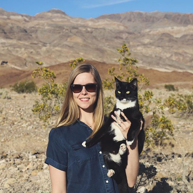 Traveling with this soft, curious animal gives me life. She (usually) likes it too. 📸: @doublecaesar when we stopped to sniff a flower in Death Valley // #adventurecats