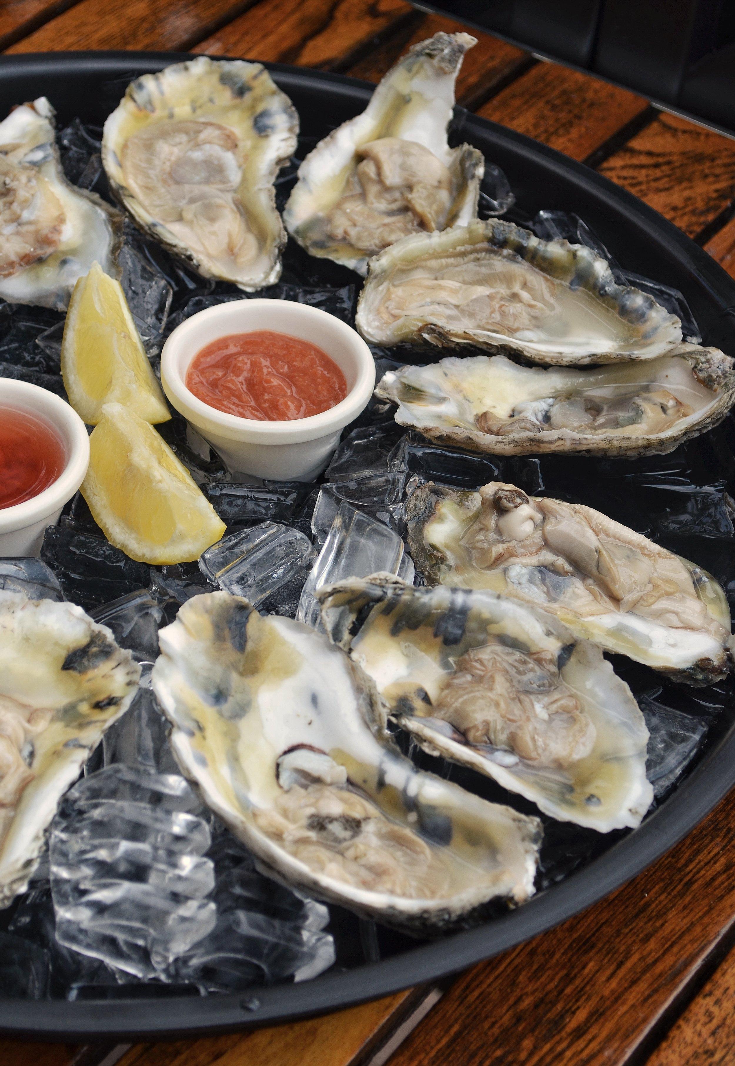 oysters_01.jpg