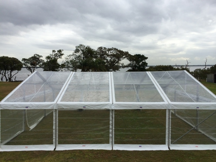 Clear Roof Marquees 3.jpg