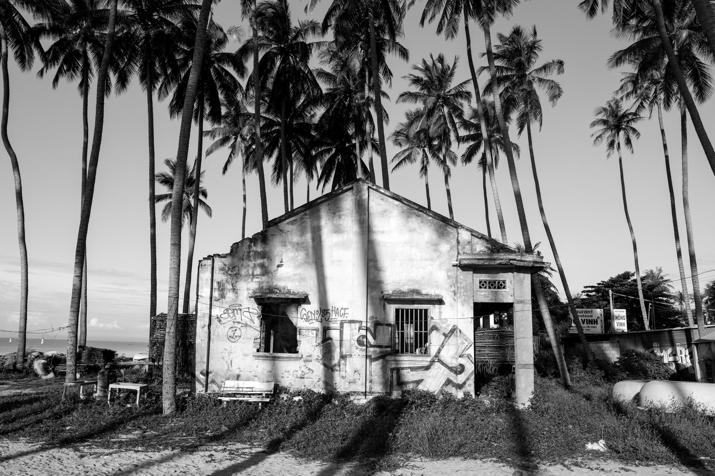 Palms & Shadows_Mui Ne_Greyscale_-1.jpg