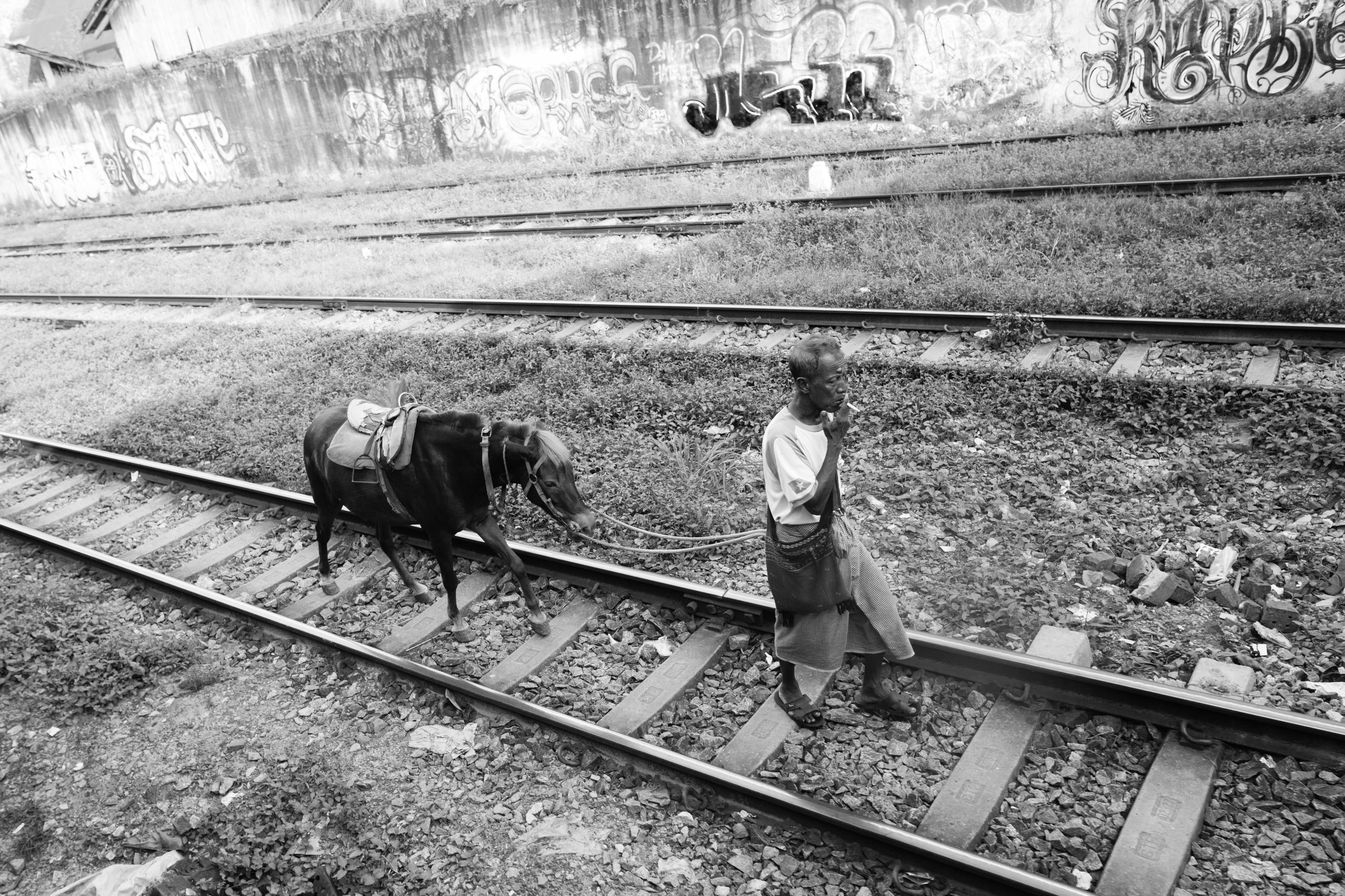 Donkey Tracks_Yangon_Mono_-1.jpg