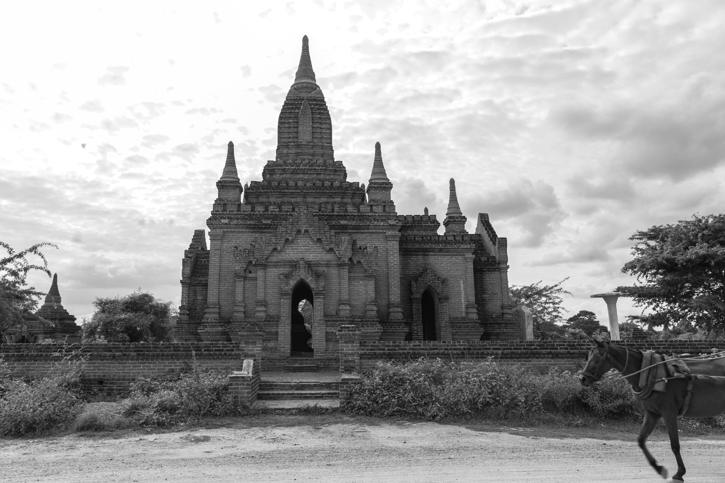 Horse and Temple_Bagan_Mono_-1.jpg
