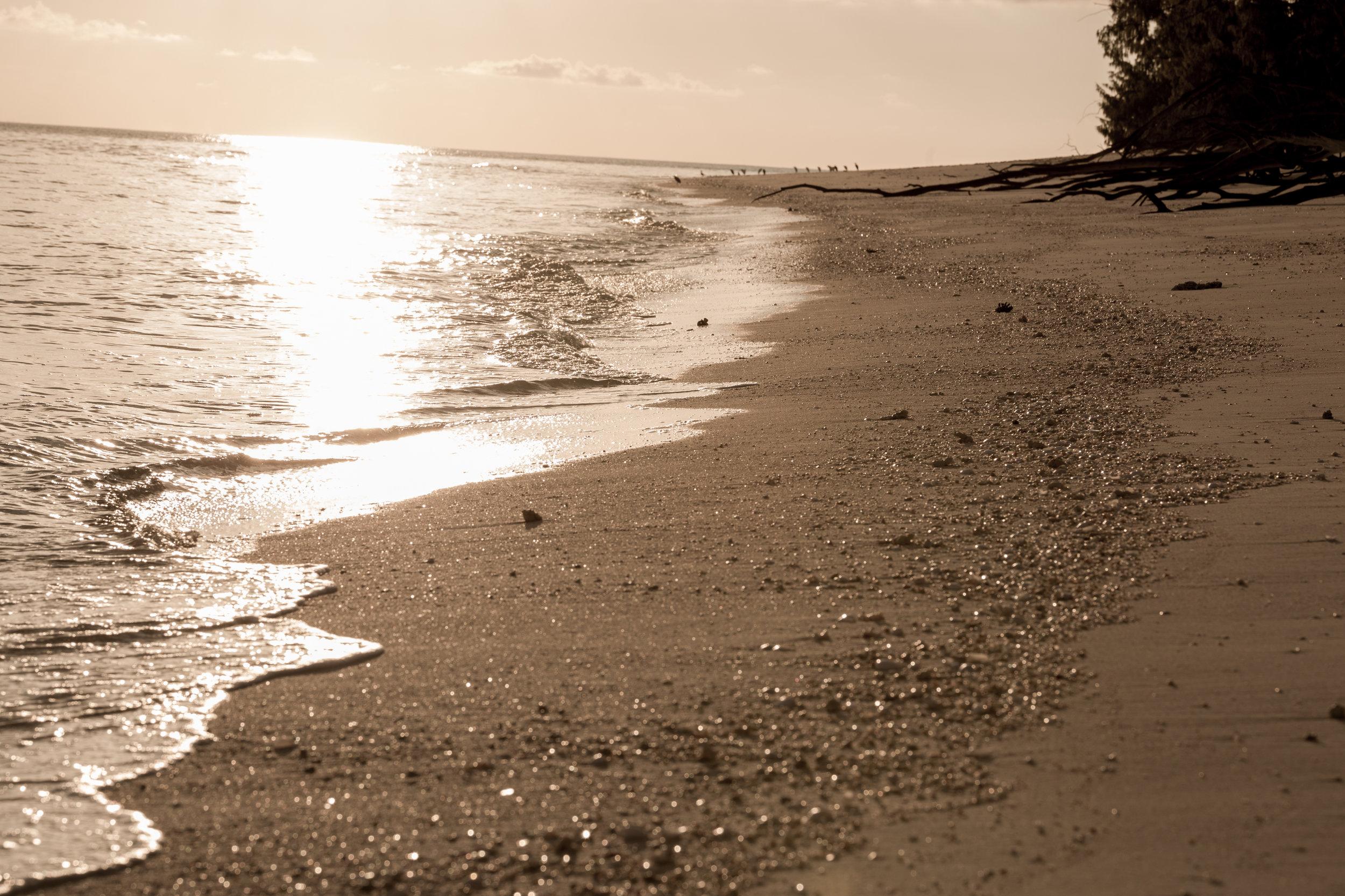 NW Island-5.jpg