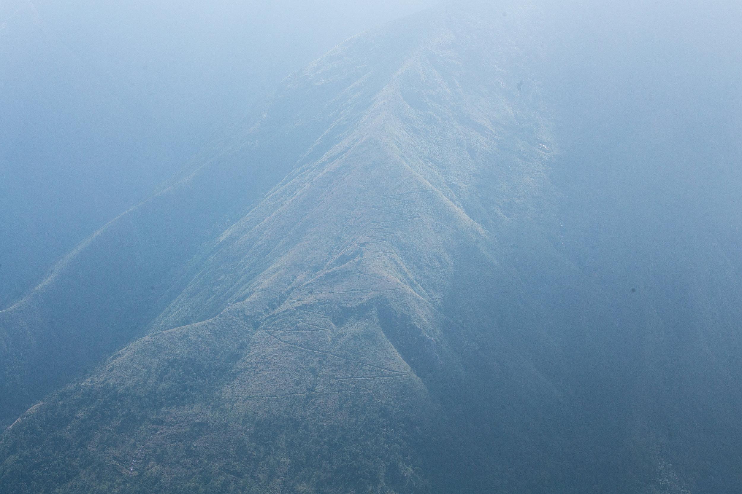 Mist and Sun_Munnar_-1.jpg