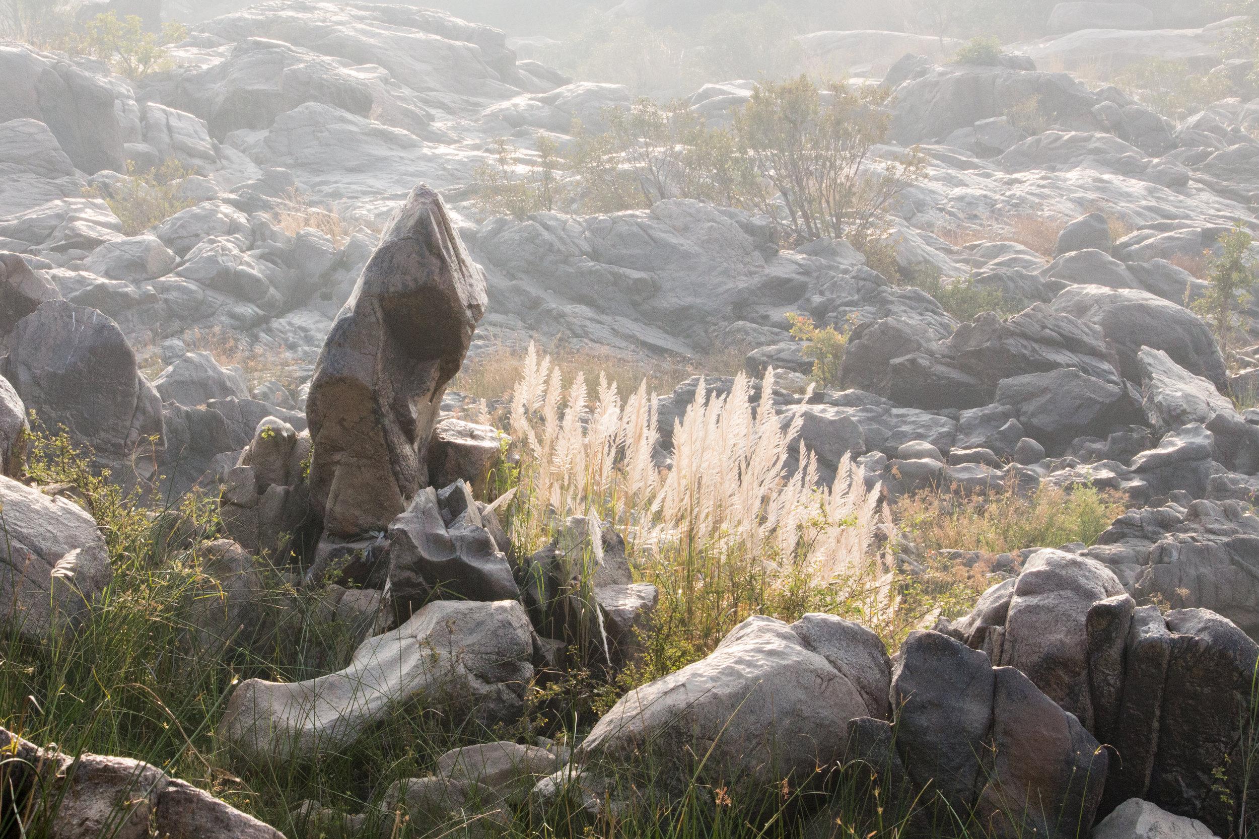 Rocks and Grasses_Hampi_-1.jpg