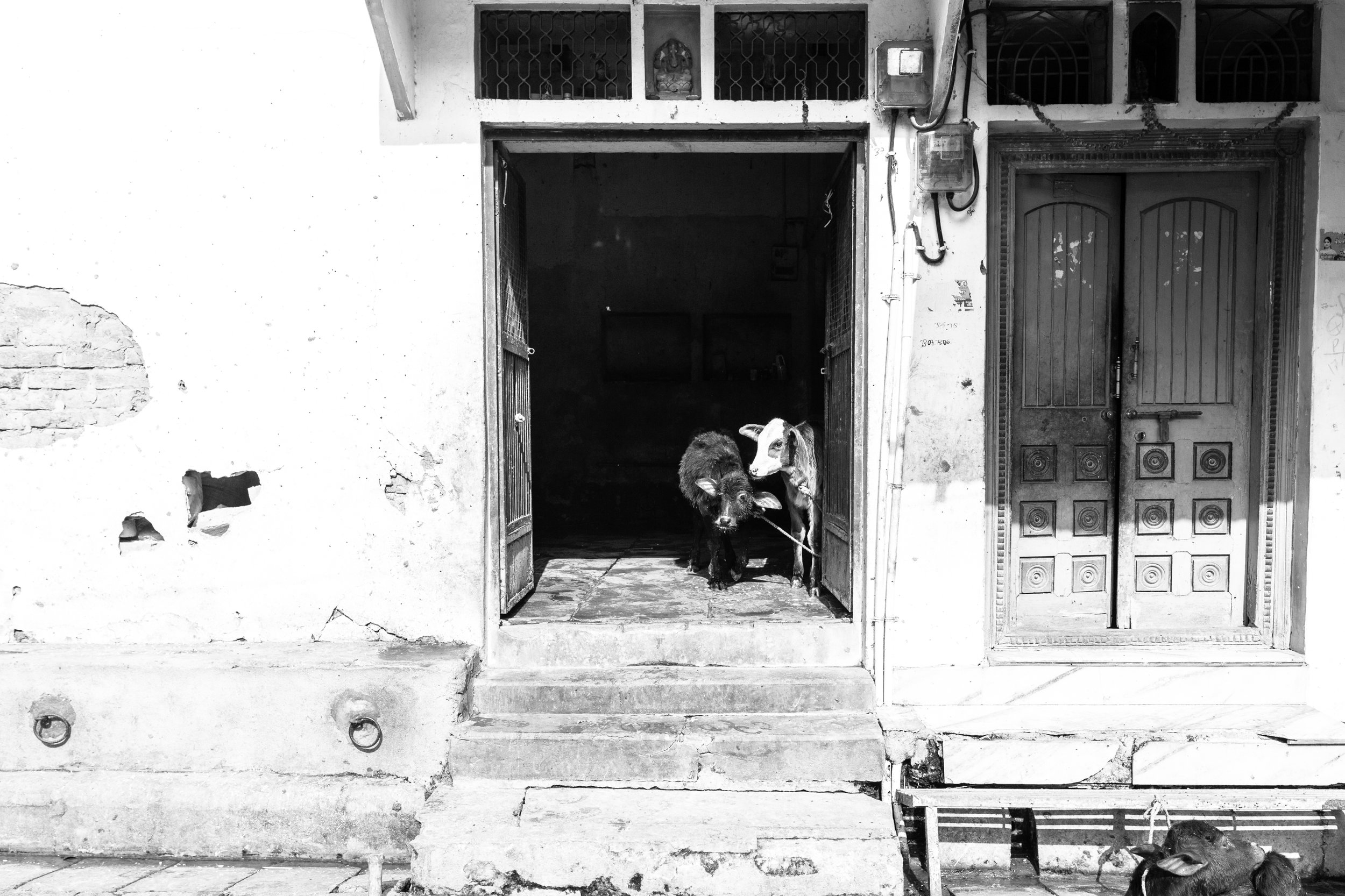 Babies in the Doorway_Varanasi_Mono_-2.jpg