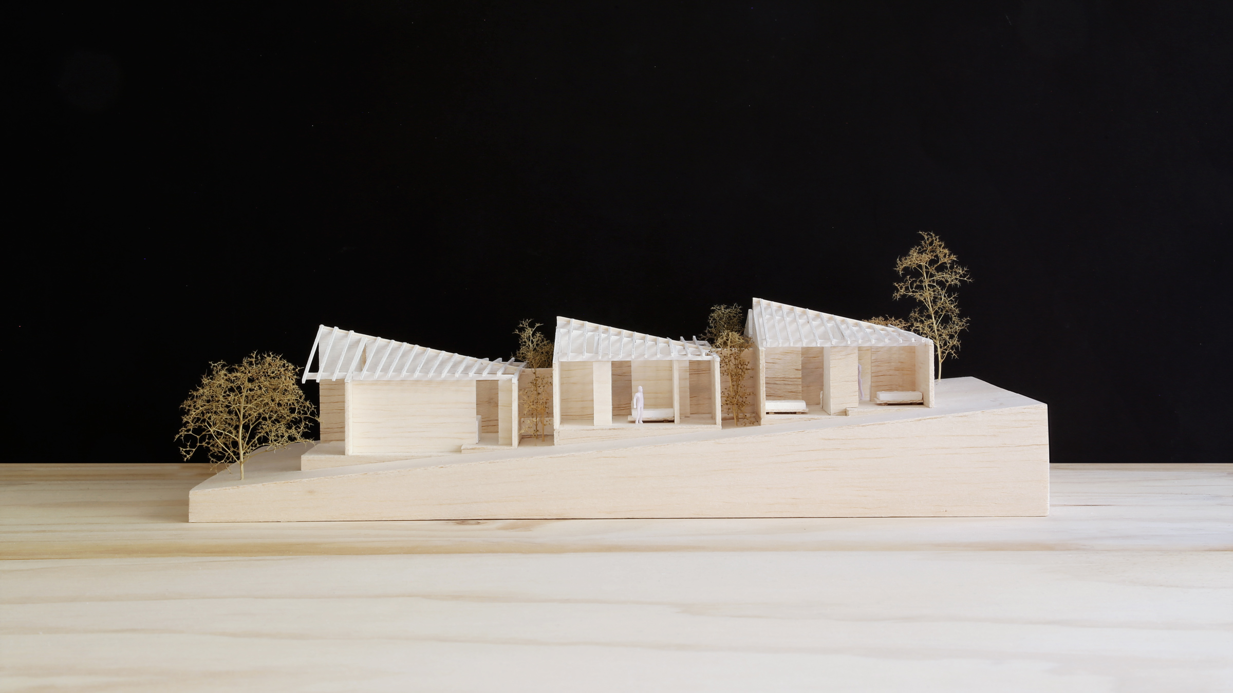 SYDNEY-RESIDENTIAL-ARCHITECT-TRIAS-STUDIO-HALF A HOUSE-M03