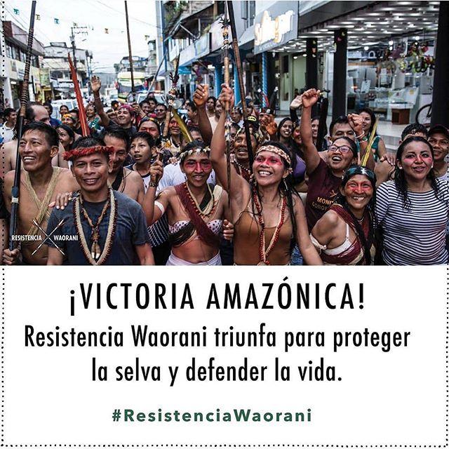Nuestra música se sustenta en el legado de los pueblos indígenas del Ecuador. Esta es una victoria que trasciende a muchos niveles y que es de todos. Gracias por esta lucha 💪 @waoresistencia . Estamos muy orgullosos de que @mateo_kingman haya sido parte de esta campaña en la que puso tanto esfuerzo y corazón 🙌 . #resistenciawaorani #amazonia #amazon #ecuador #environment #waoresistencia