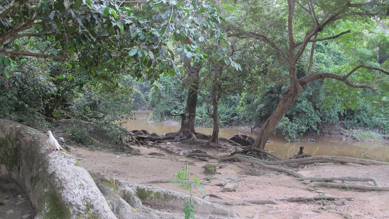 ojubo osun osogbo, susanne wenger, sacred grove of osogbo, yoruba, orisha image