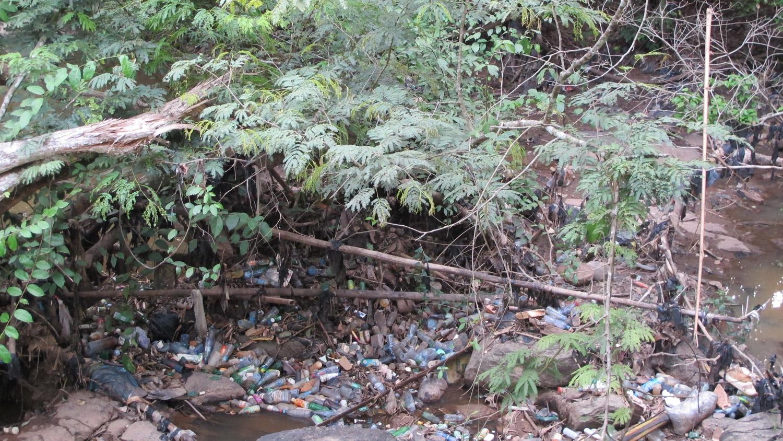sacred grove osogbo, susanne wenger
