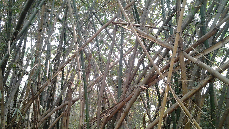 sacred grove of osogbo, new sacred arts, susanne wenger, dunja herzog