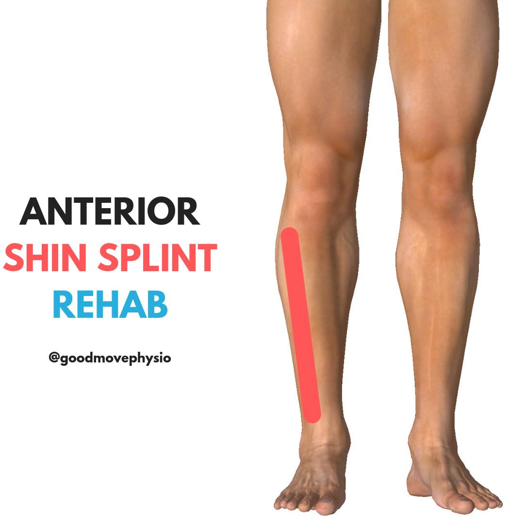 Anterior Shin Splint Rehab