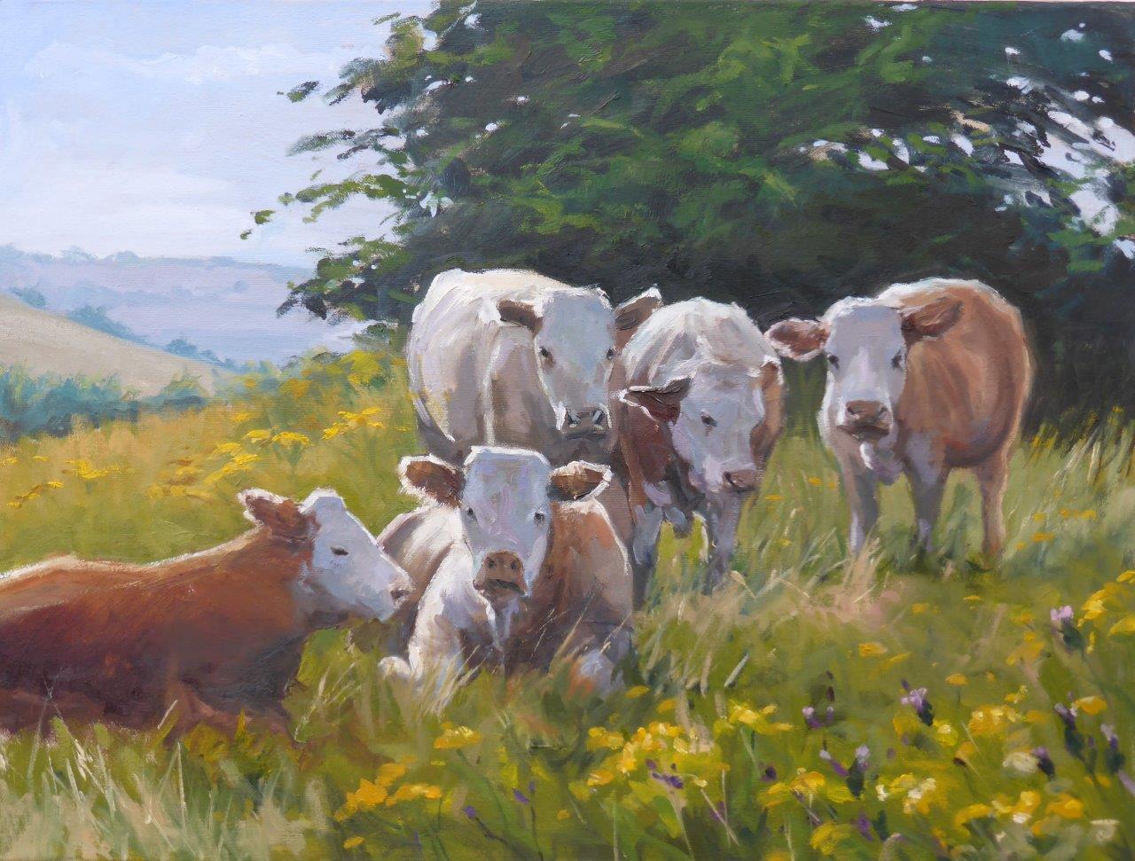 Hadleigh Cows - Oil on Canvas 45cm x 60cm 2015.jpg