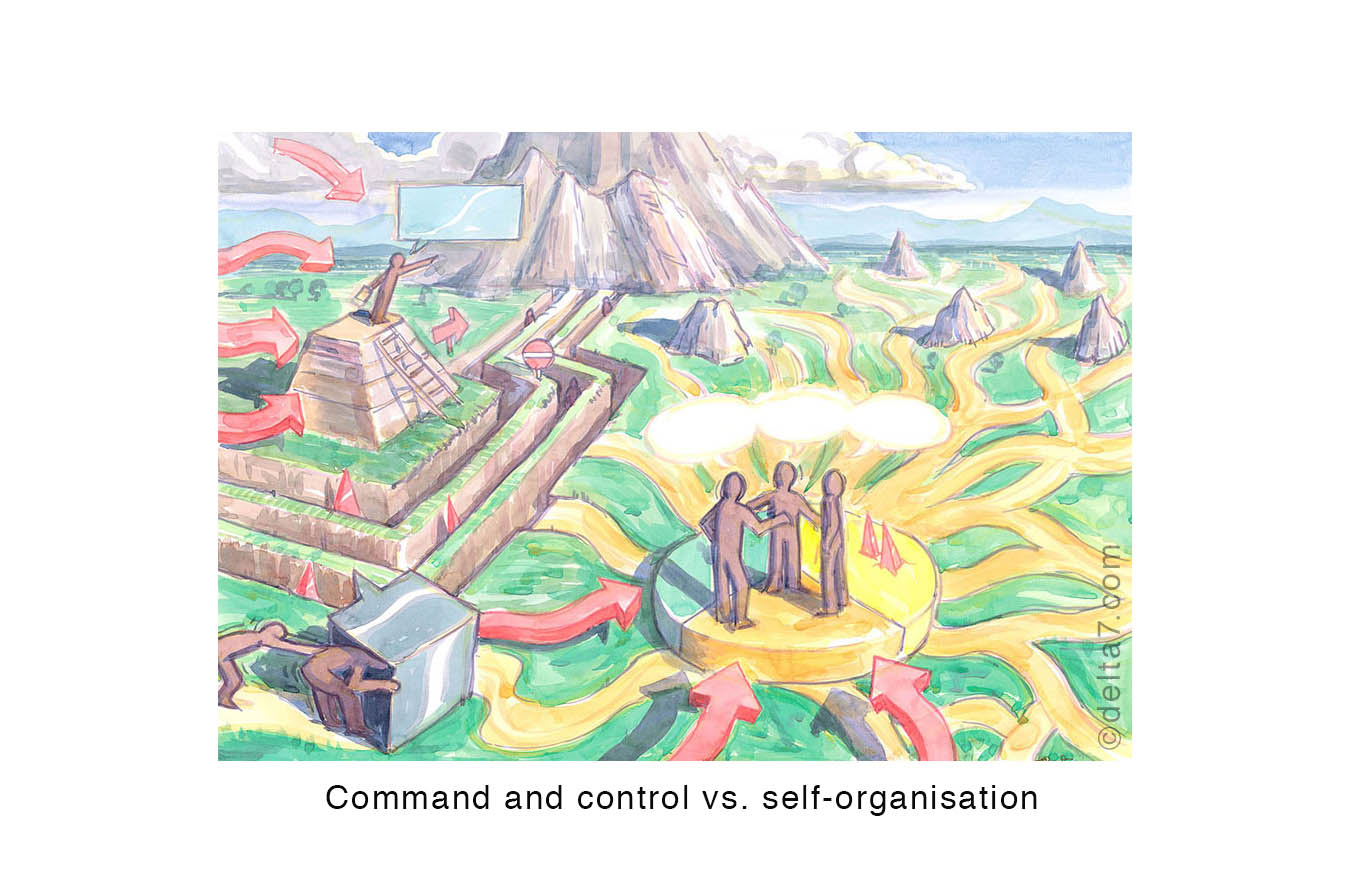 Command and control  vs . self-organisation