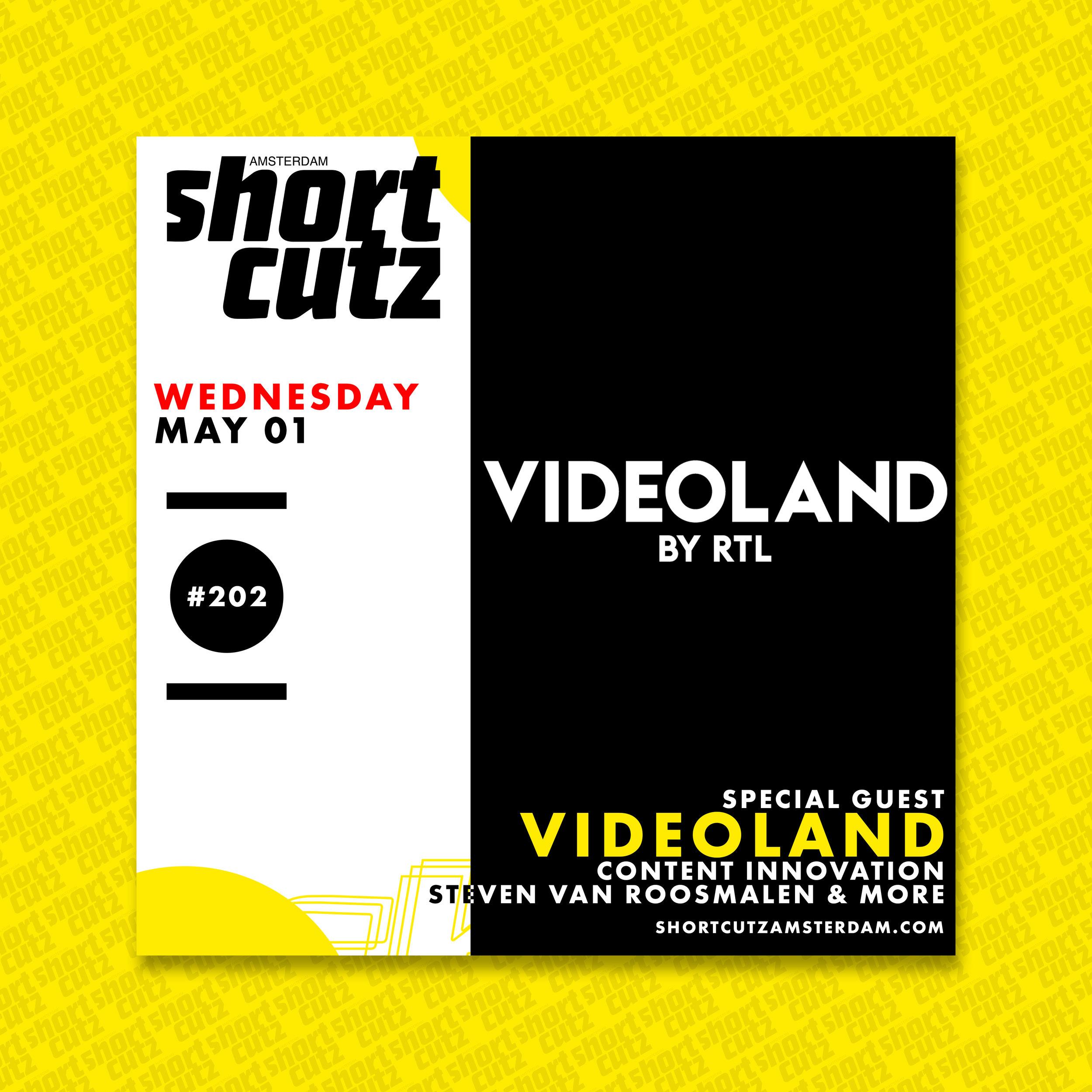 #202 Poster Videoland (1).jpg