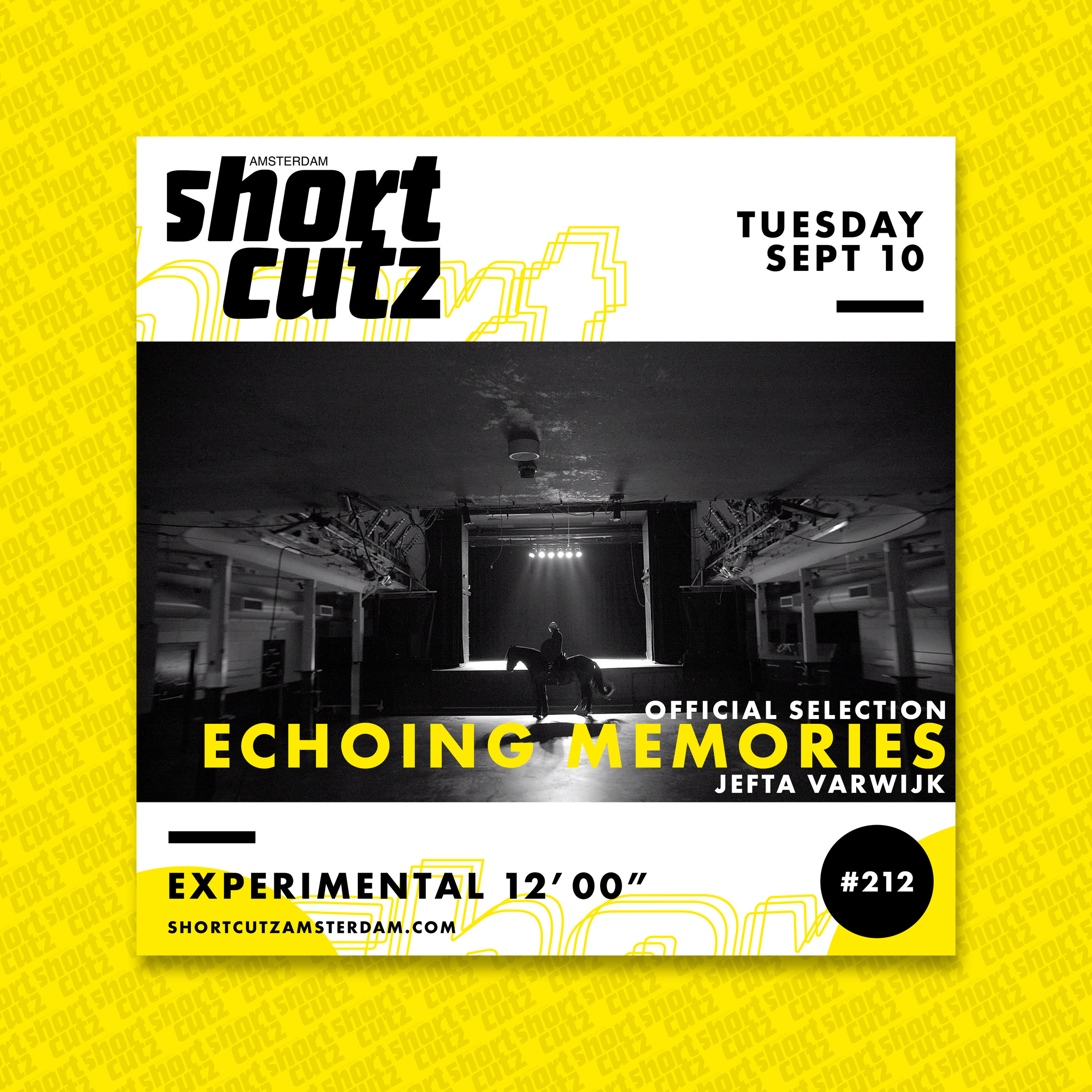 #212 Poster Echoing Memories.jpg