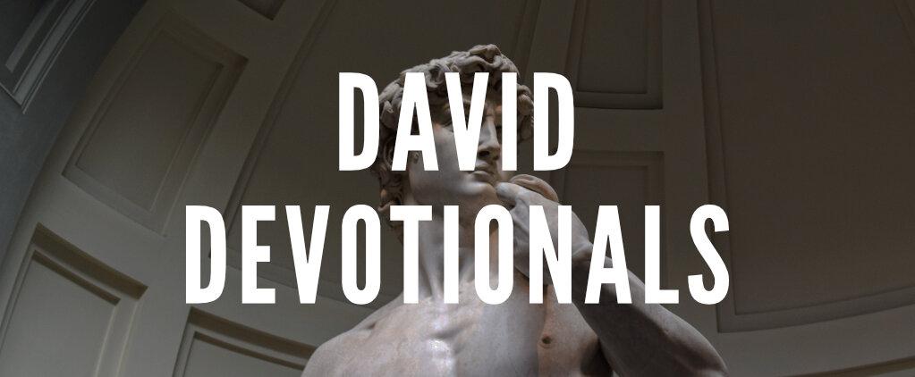 DAVID_DEVOS.jpg