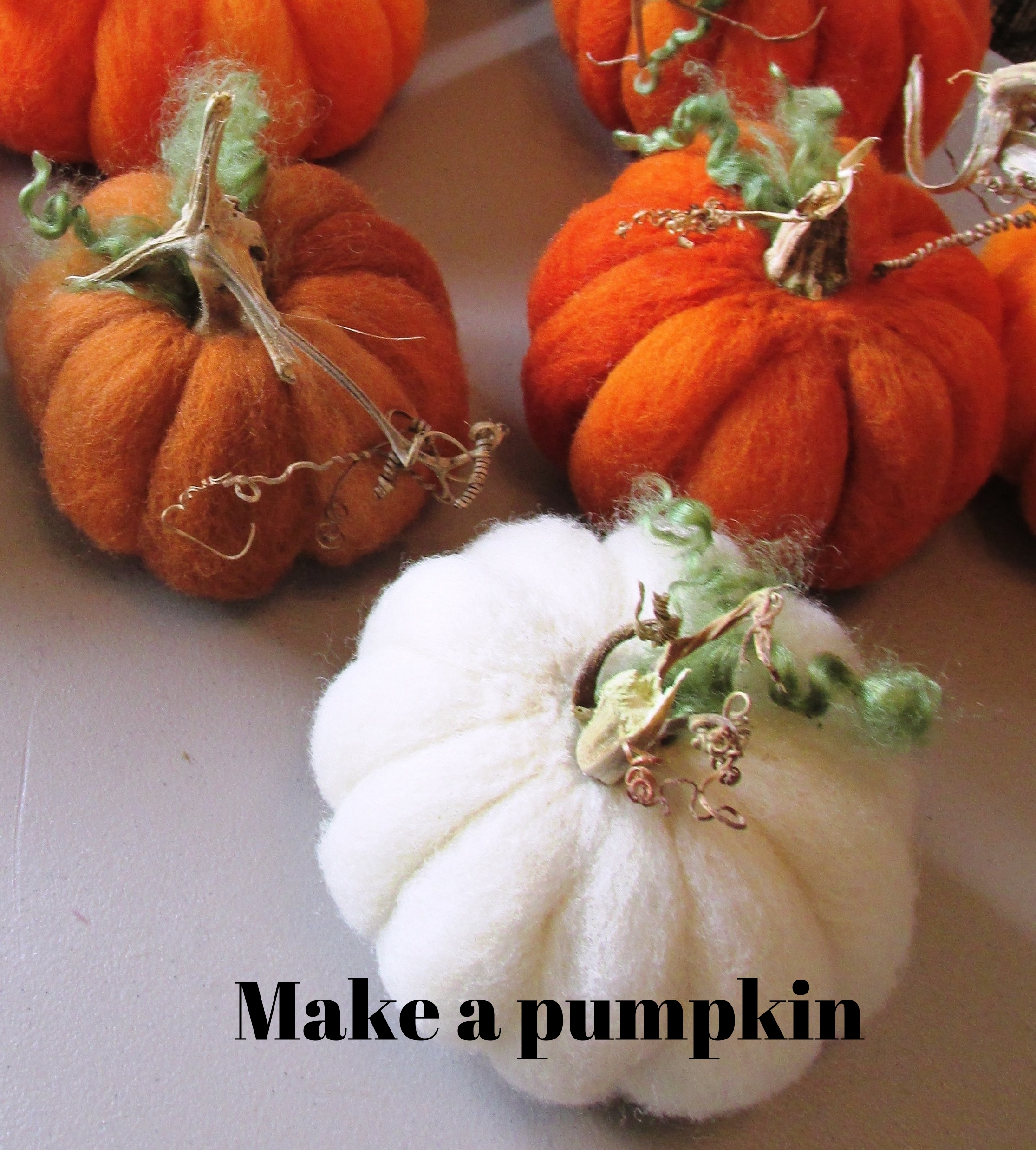 fall- pumpkins.JPG