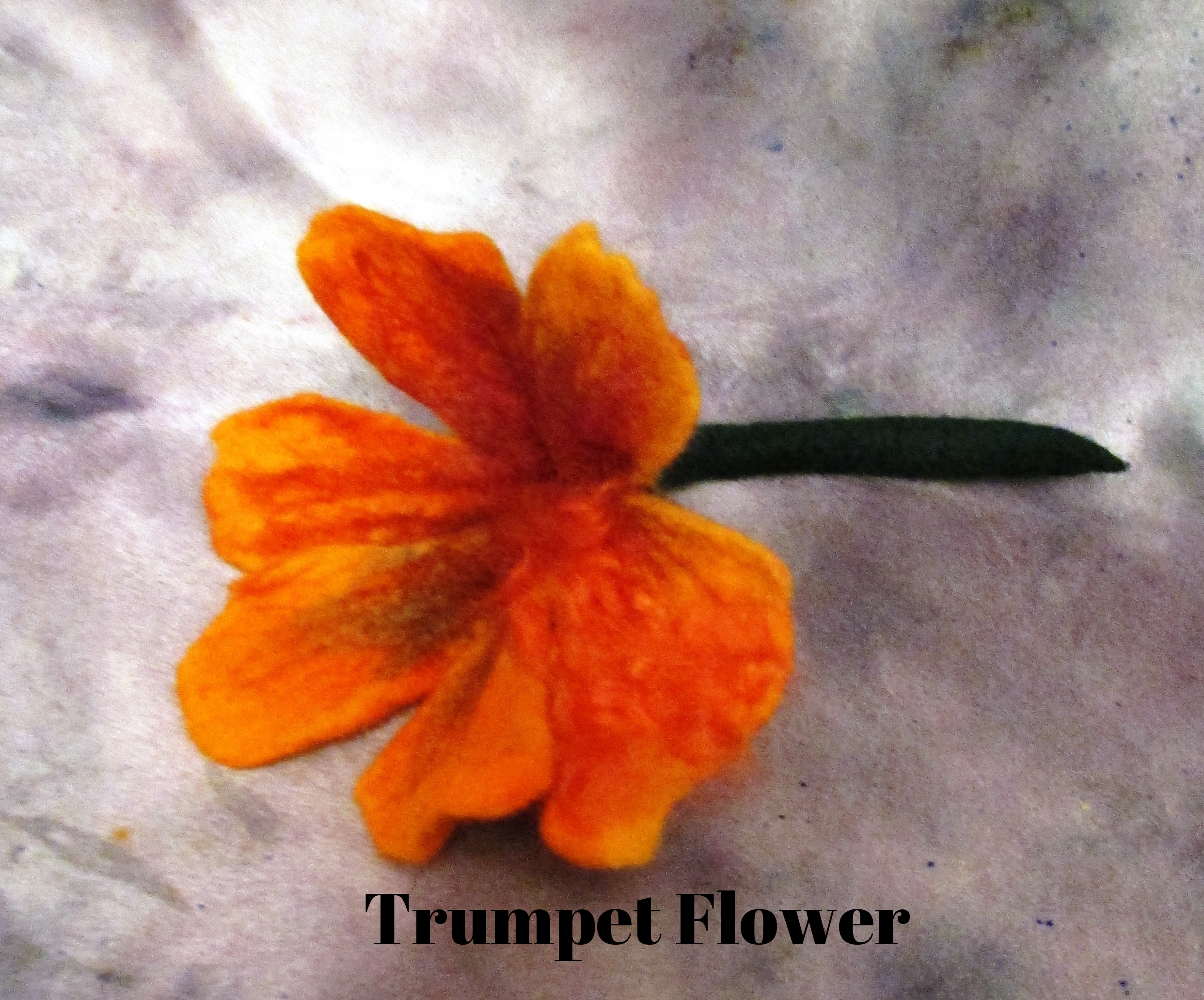 trumpet flowers.JPG
