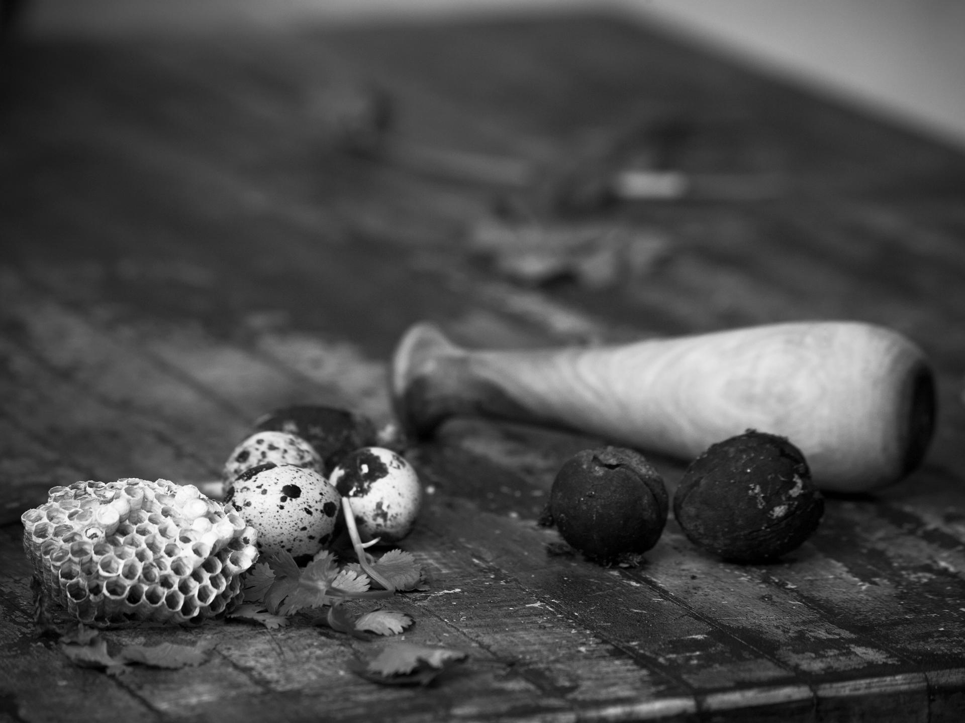 Henry Lopez Photography Nat_rebel_2_ 2271.jpg