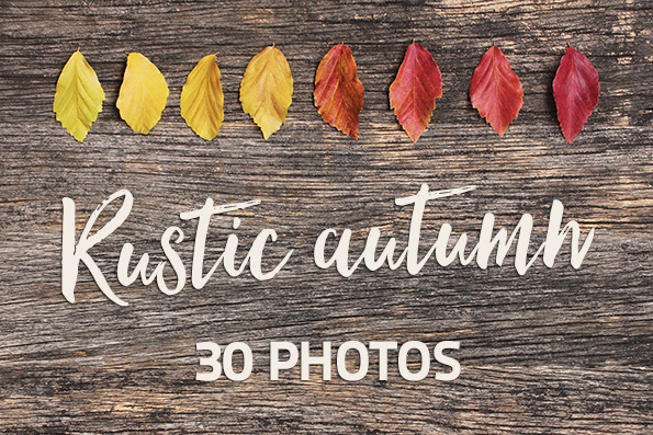 Colorful autumn leaves on rustic wooden desk