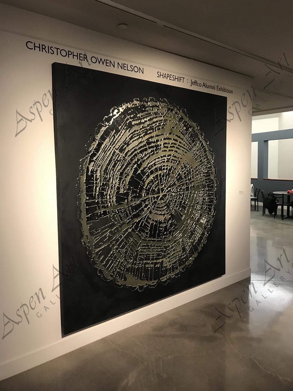 christopher owen nelson aspen art gallery