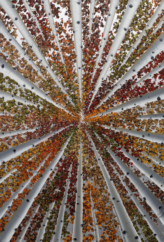 Colors of San Juan 36x24