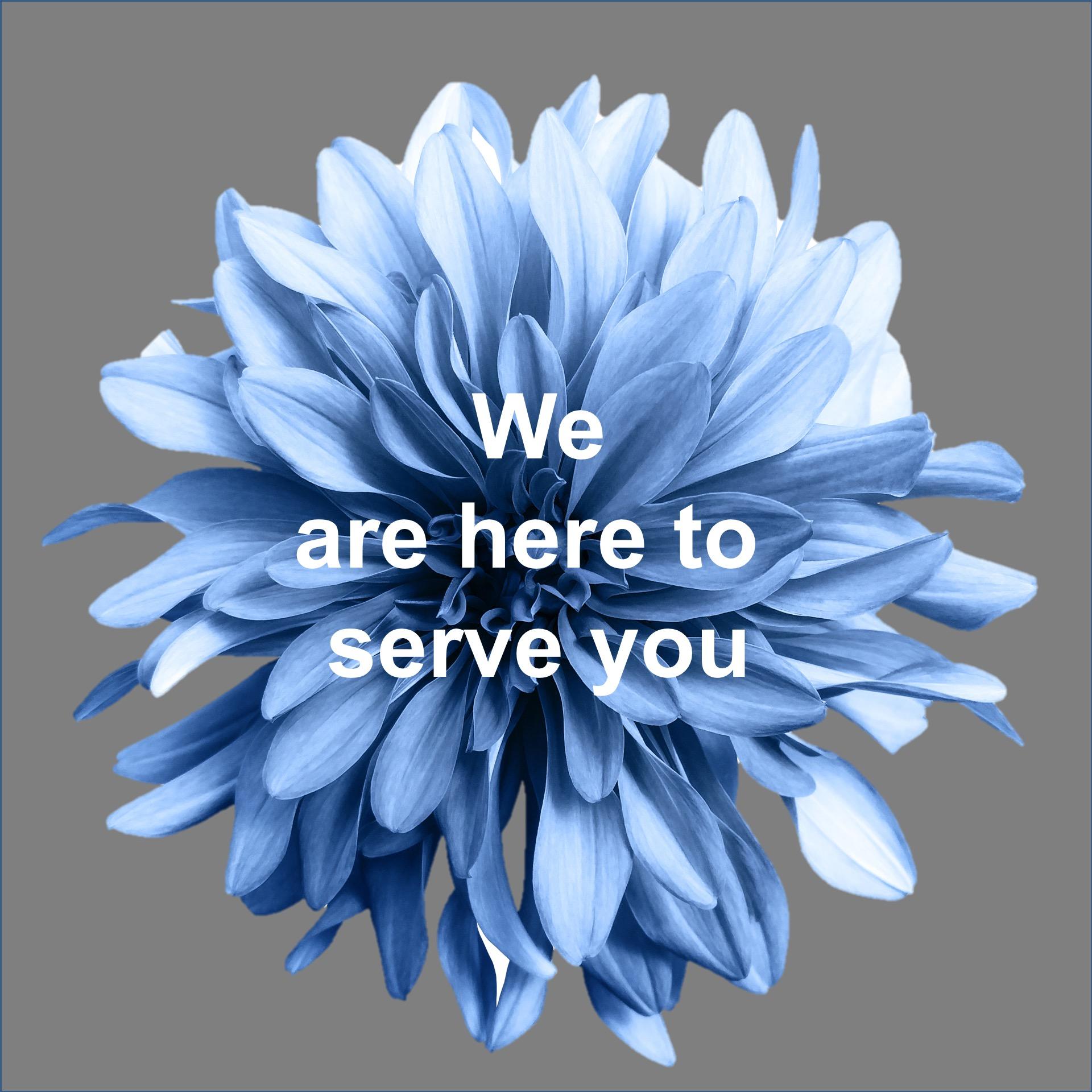 serve you.jpg