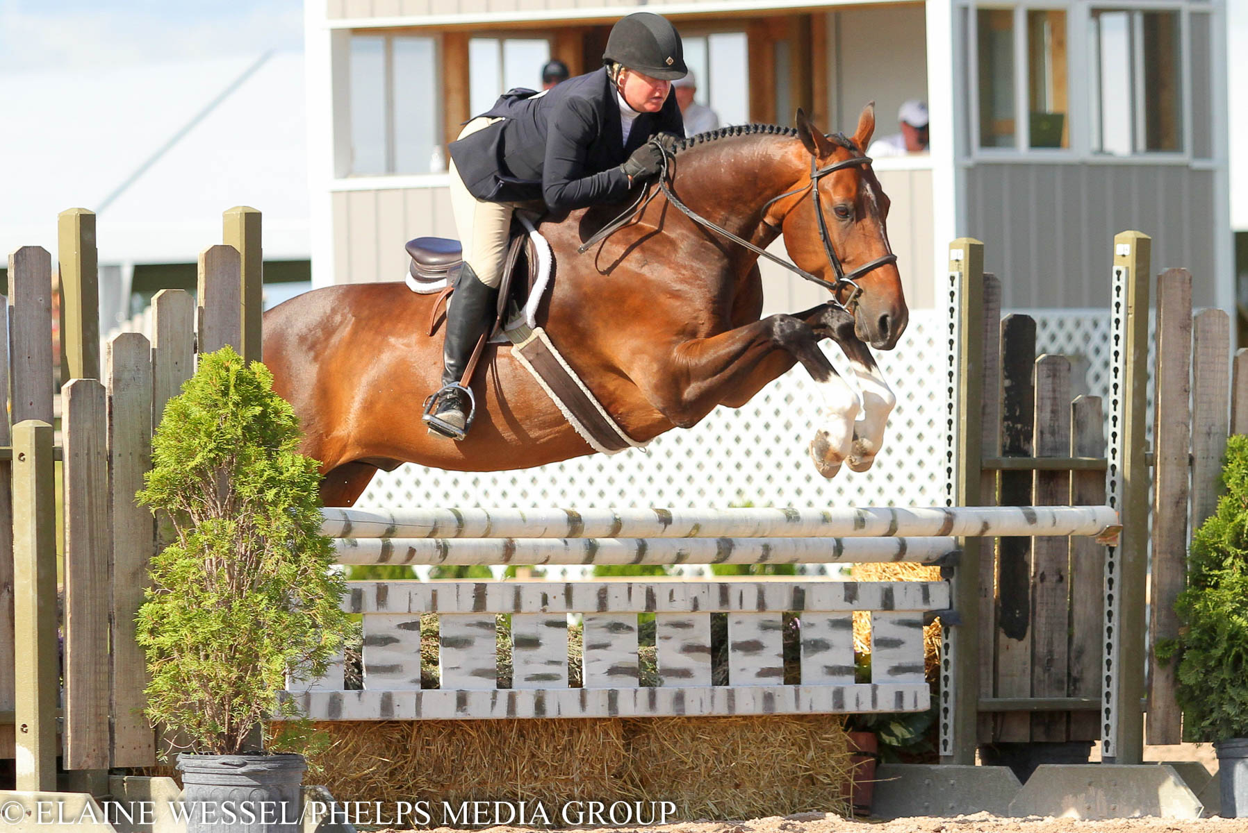 2015_GLEF_Week III_Amateur Owner 3'6 Hunters 35+_Patricia Edwards_Avendaro_Jumping.JPG