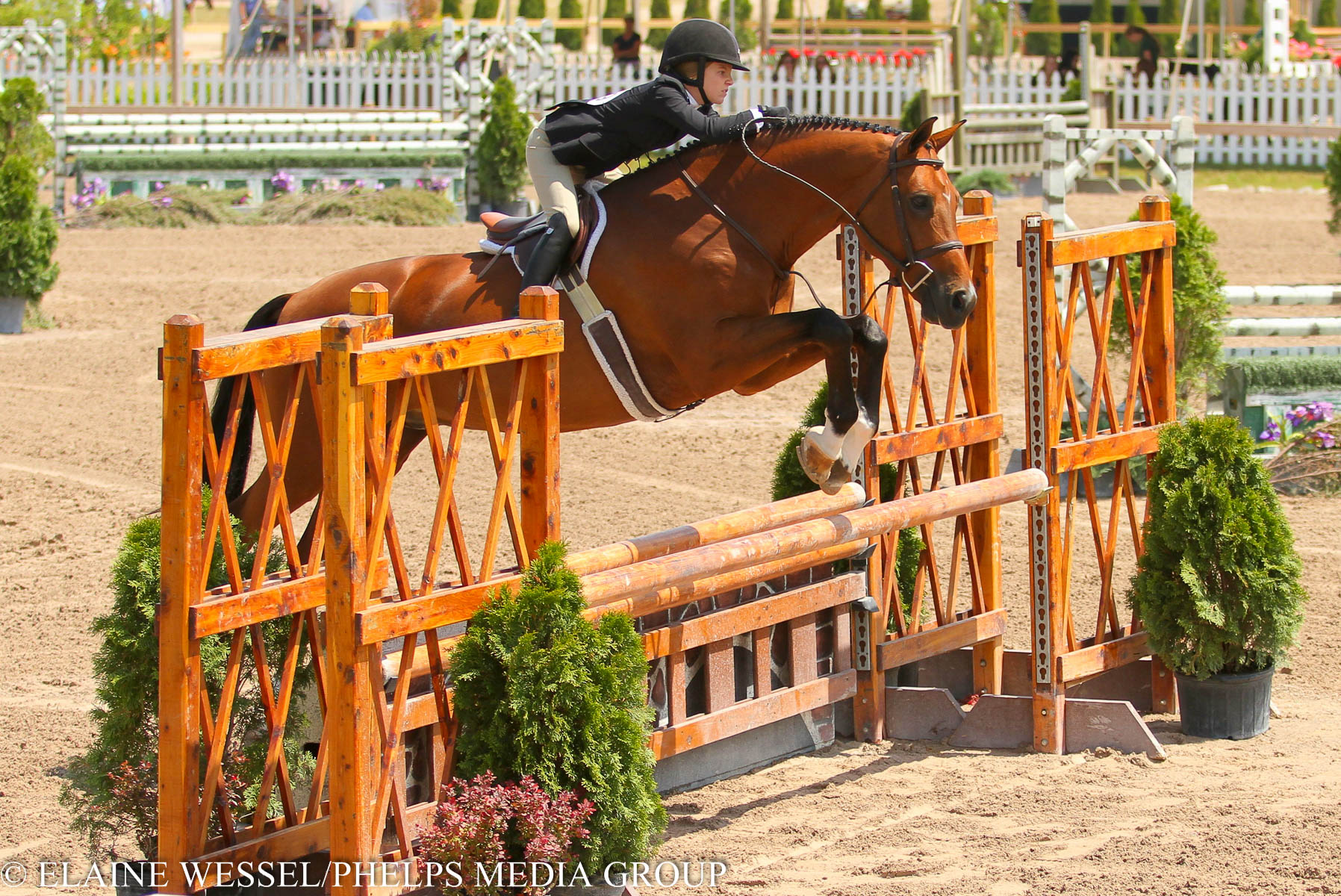 2015_GLEF_Week II_Junior 3'3 Hunters_Sophie Gochman_World Time_Jumping.jpg
