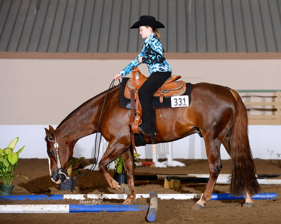 Florida Gold Coast Quarter Horse Show  .jpg