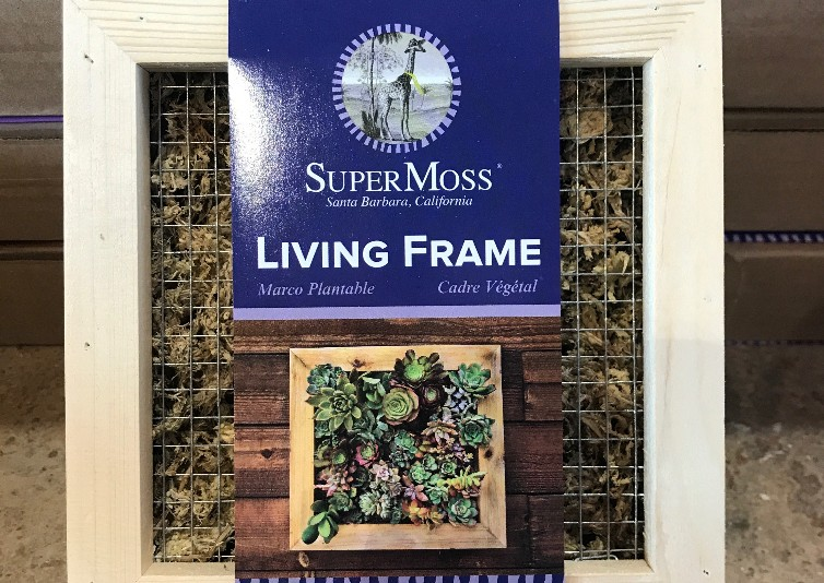 Make & Take - Join Melissa as she guides you in the creation of your own living frame made with succulents. Includes frame and plants.$ 30.00