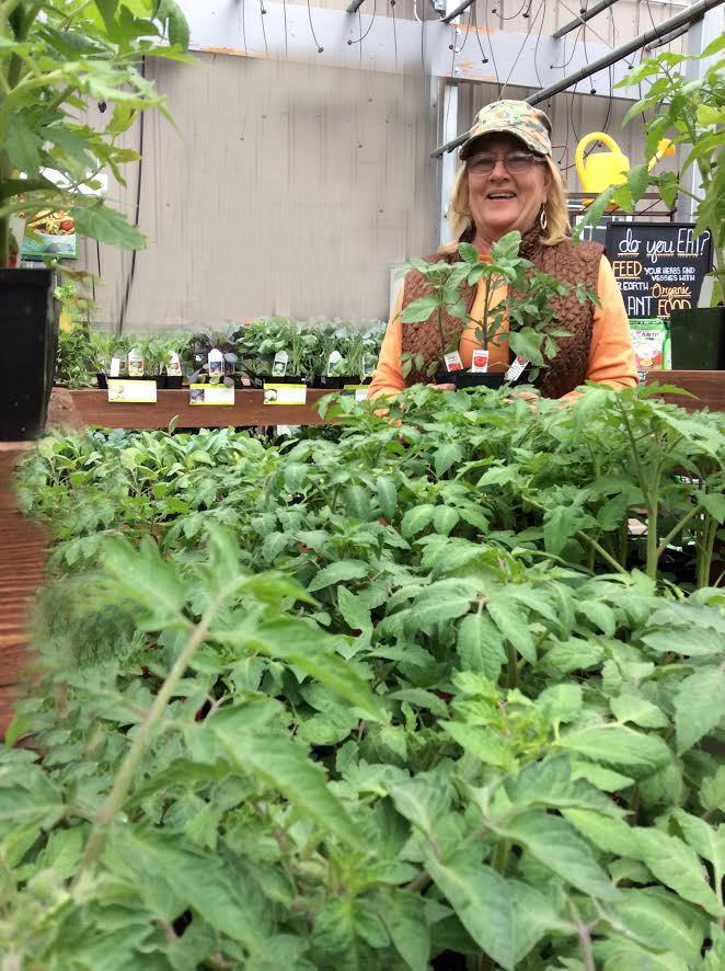 Part 3 - Growing Microgreens/Sprouts & selecting, pruning & Succeeding with Tomatoes & Peppers with Terrie Wolf, Our super talented tomato farmer!