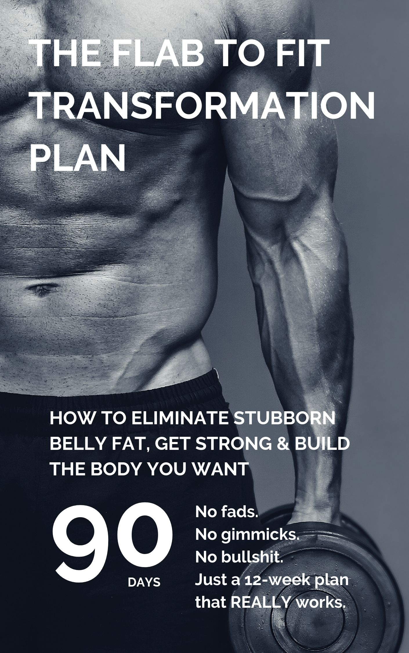Flab to fit plan